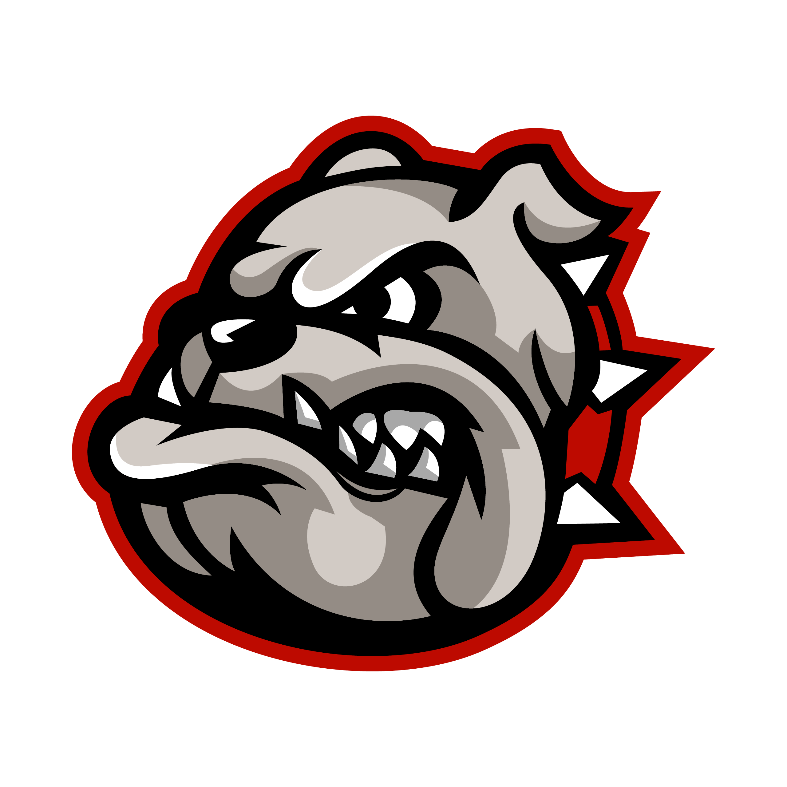 Bulldog logo for boccia team